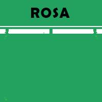 rosa under 14 sassuolo
