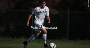Stefano Ferraresi