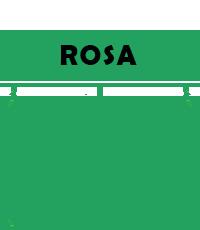Rosa Under 16 Sassuolo